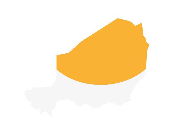 La région de l'Aïr et du Ténéré